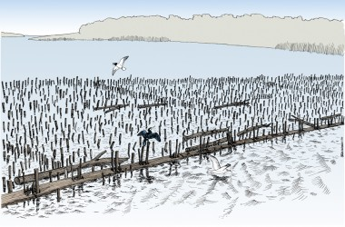 Spærringen ligge  Haderslev Fjords udmunding. Etableret år 403 e. Kr. f., altså samtidig med den yngste ofring i Ejsbøl mose. (Tegning: Jørgen Andersen, Museum Sønderjylland)