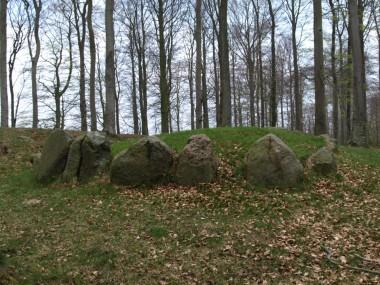 Bemærk den frostsprængte sten. Foto: Signe Lützau Pedersen.