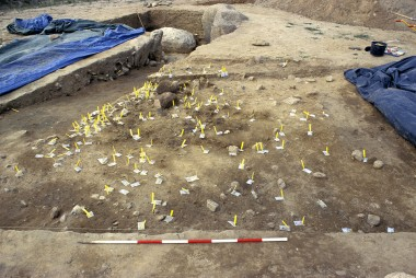 De gule plastikpinde markerer fund af potteskår.