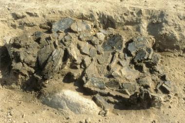 Karrene var hensat som offergaver til de døde foran randstenene, ved indgangen til det vestlige kammer i langhøjen.
