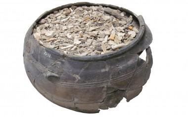[:da]Urnen er fyldt med den gravlagtes knogler og gravgaver.[:de]Urnen er fyldt med den gravlagtes knogler og de gravgaverne.[:]