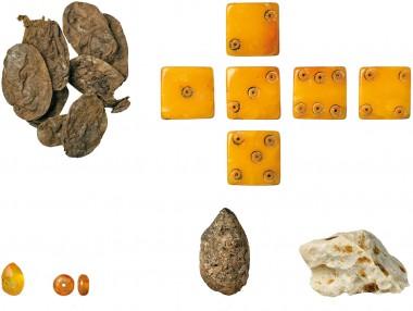 En terning og lidt rav, øverst til venstre blommer, nederst i midten en hundelort og nederst til højre en klump bivoks.