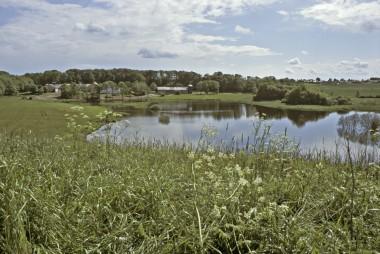 [:da] [:de]1. Ejsbøl sø som den ser ud i dag.[:]
