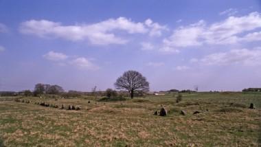 Sådan ses de i landskabet i dag. Foto: Mette Boesen.